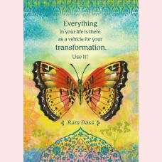 Everything in your life is there as a vehicle for your transformation. Use it!