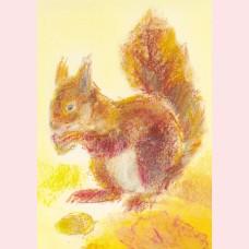 Dieren 4 - Eekhoorntje