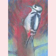 Klein vogelboek 1