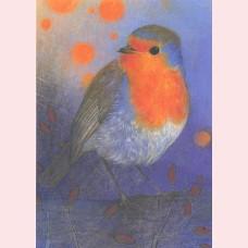 Klein vogelboek 2