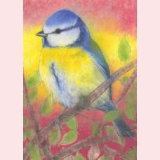 Klein vogelboek 3