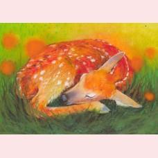 Klein slaapdierenboek 1