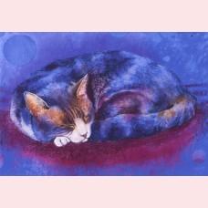 Klein slaapdierenboek 3