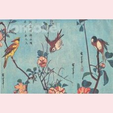 Birds, camelias, wild roses and cherry blossoms