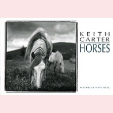 Keith Carter Horses
