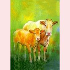 Weet je wat de dieren zeggen 2 - Koe met kalfje